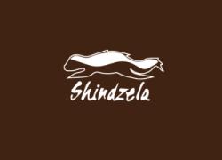 shindzela
