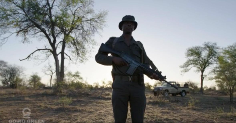 "Timbavati Fights Poaching In CNN Series ""Going Green"""