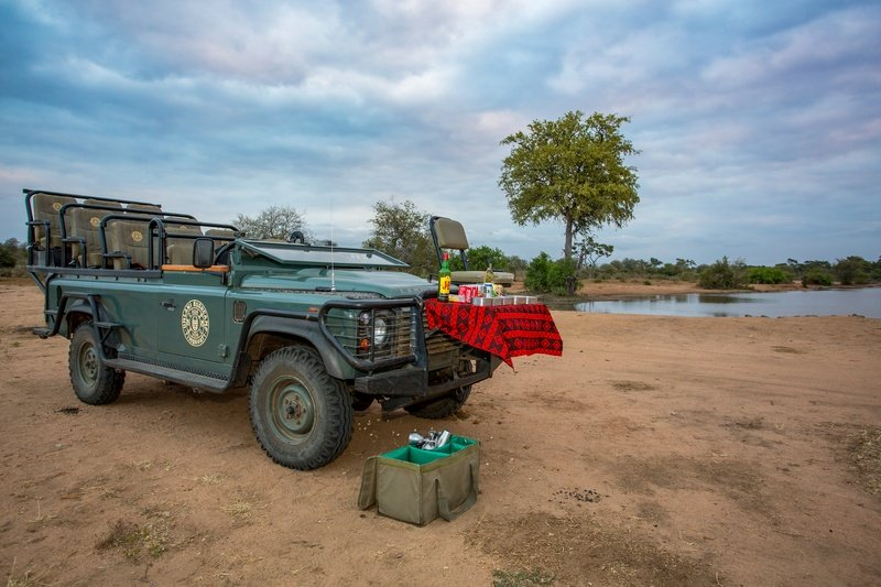A Safari Experience At Umlani Bushcamp