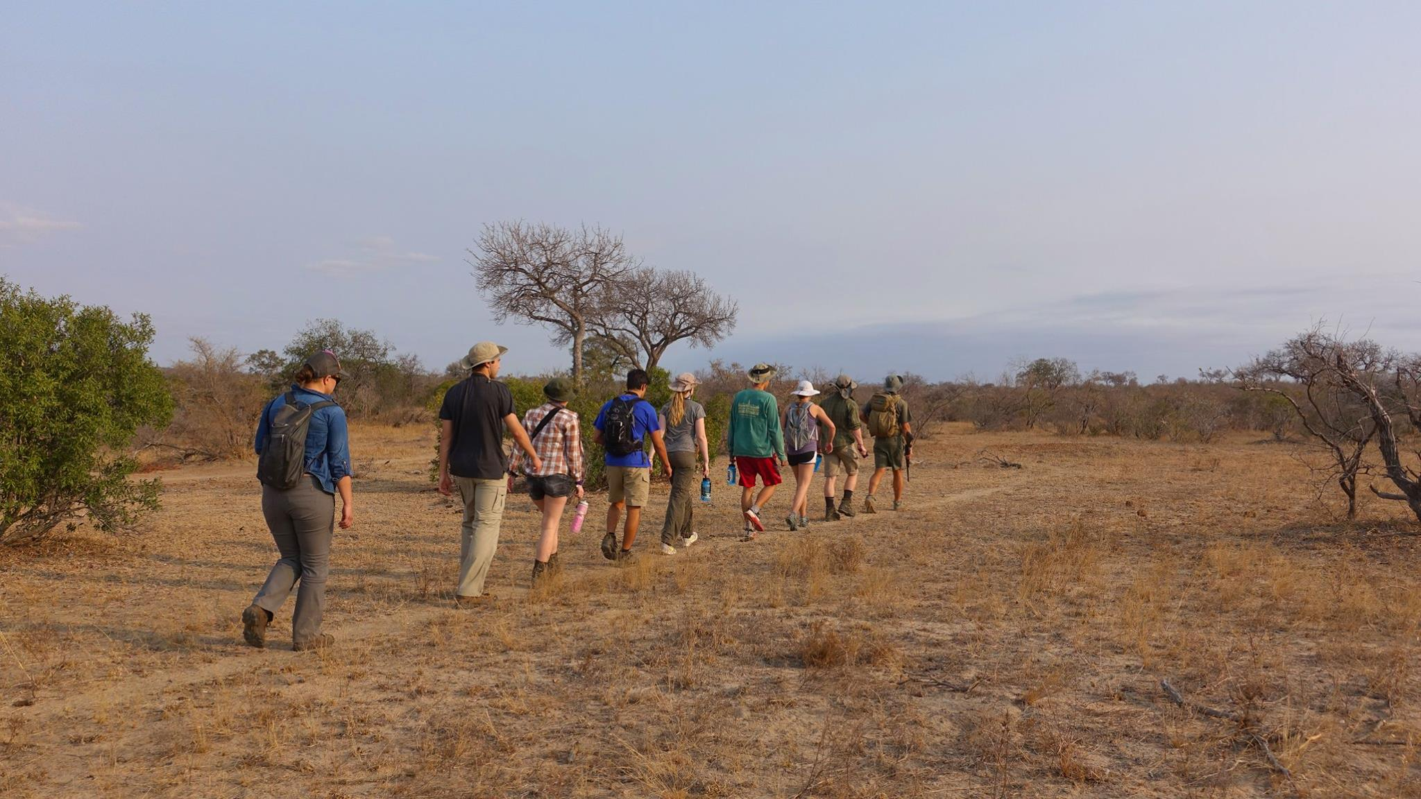 Unique Bush Walks At Bateleur Safari Camp