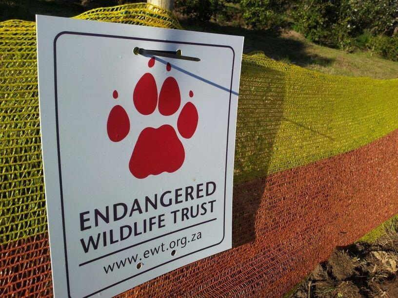 Guest Blog: Wildlife, Transport, Roadkill; Join The Coalition To Reduce Collisions