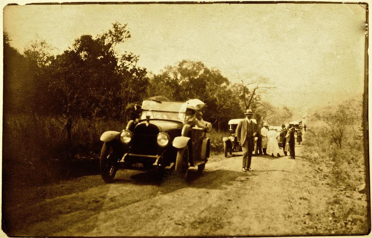 Travelers within the Timbavati.